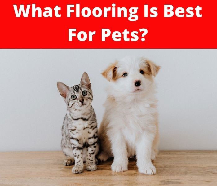 what flooring is best for pets